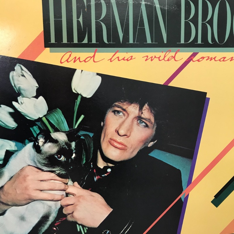 HERMAN BROOD / AA2194